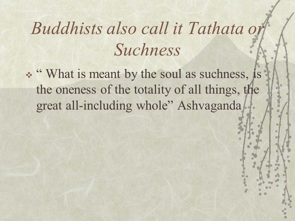 Buddhists also call it Tathata or Suchness