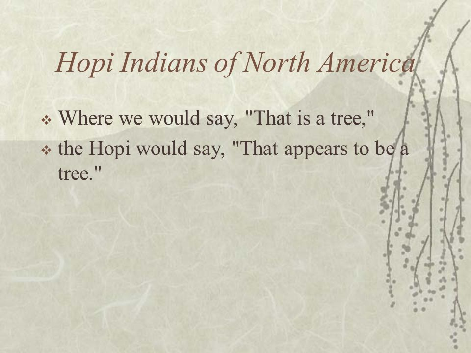 Hopi Indians of North America