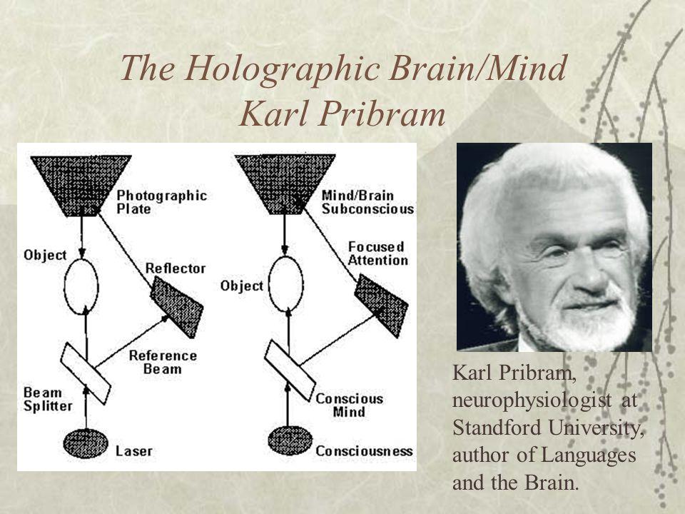 The Holographic Brain/Mind Karl Pribram