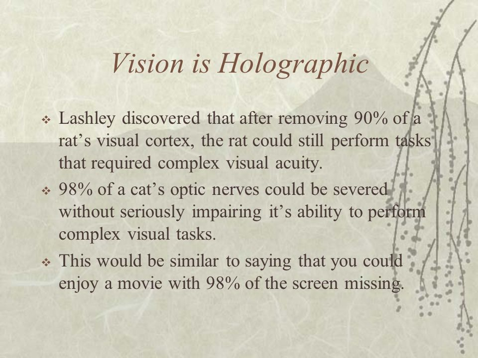 Vision is Holographic