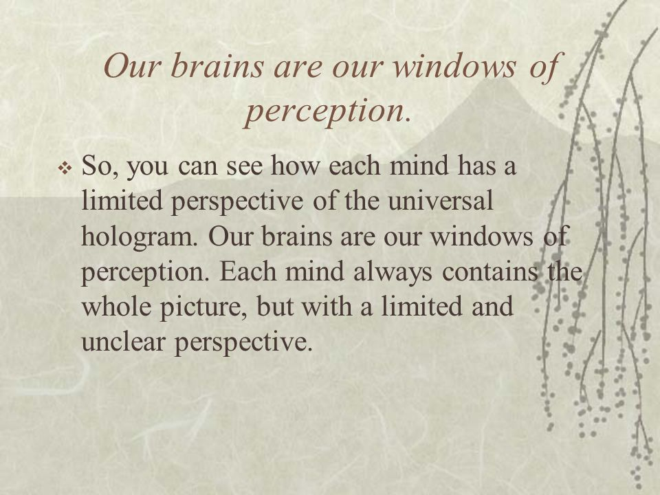 Our brains are our windows of perception.