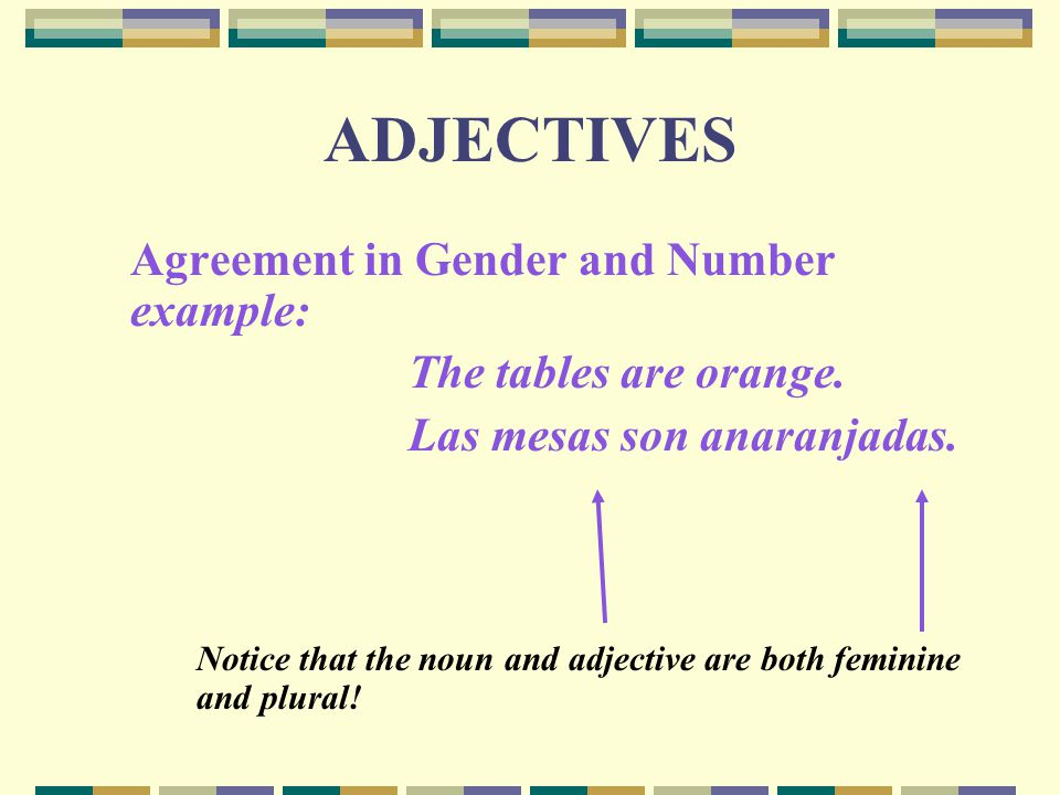 ADJECTIVES Agreement in Gender and Number example: