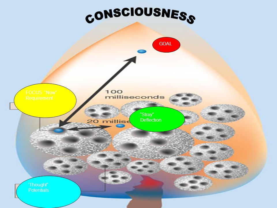 CONSCIOUSNESS GOAL FOCUS Now Requirement Stray Deflection