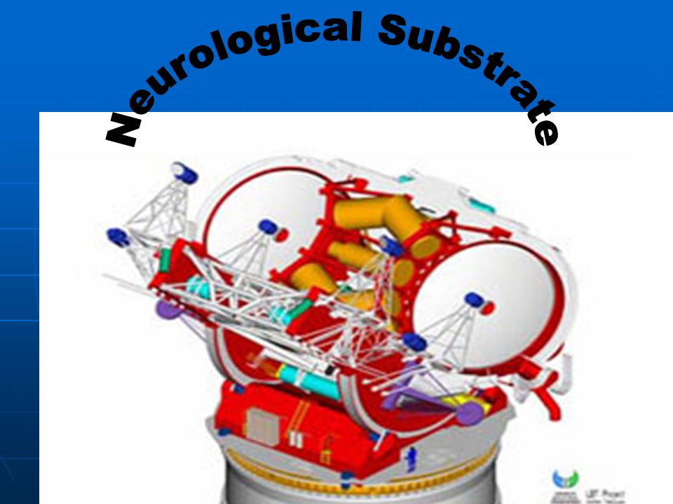 Neurological Substrate