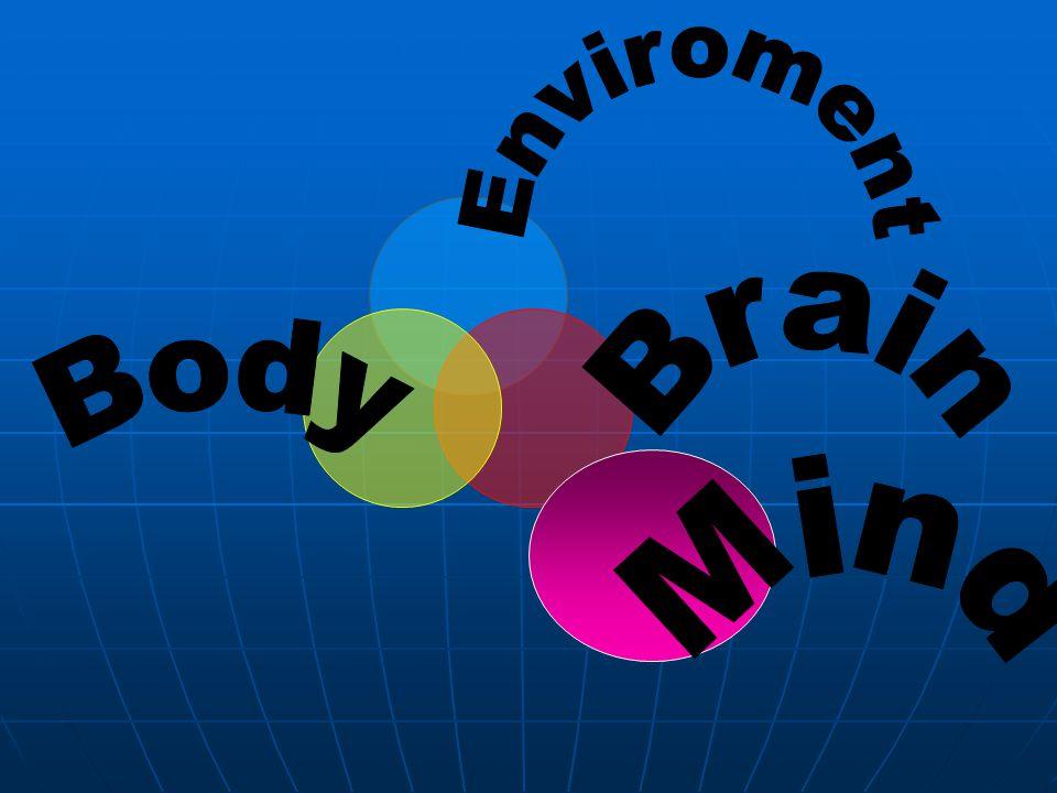 Enviroment Brain Body Mind