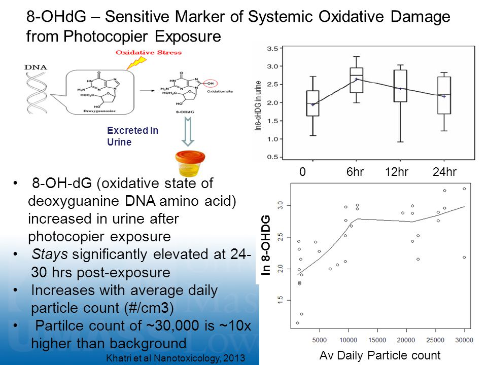 8-OHdG – Sensitive Marker of Systemic Oxidative Damage from Photocopier Exposure