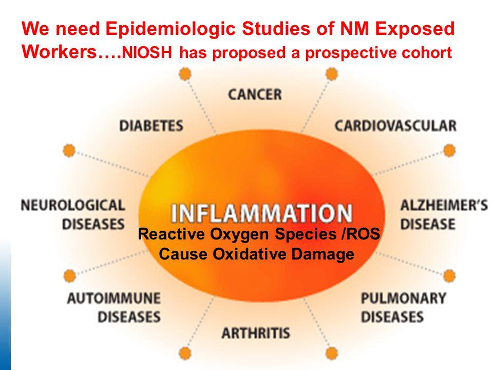 Reactive Oxygen Species /ROS Cause Oxidative Damage