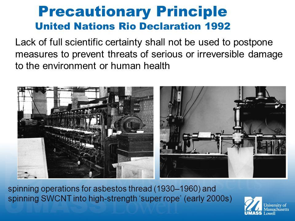 Precautionary Principle United Nations Rio Declaration 1992