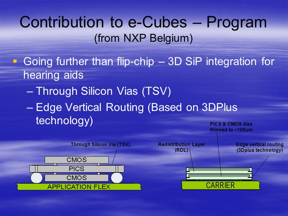Contribution to e-Cubes – Program (from NXP Belgium)