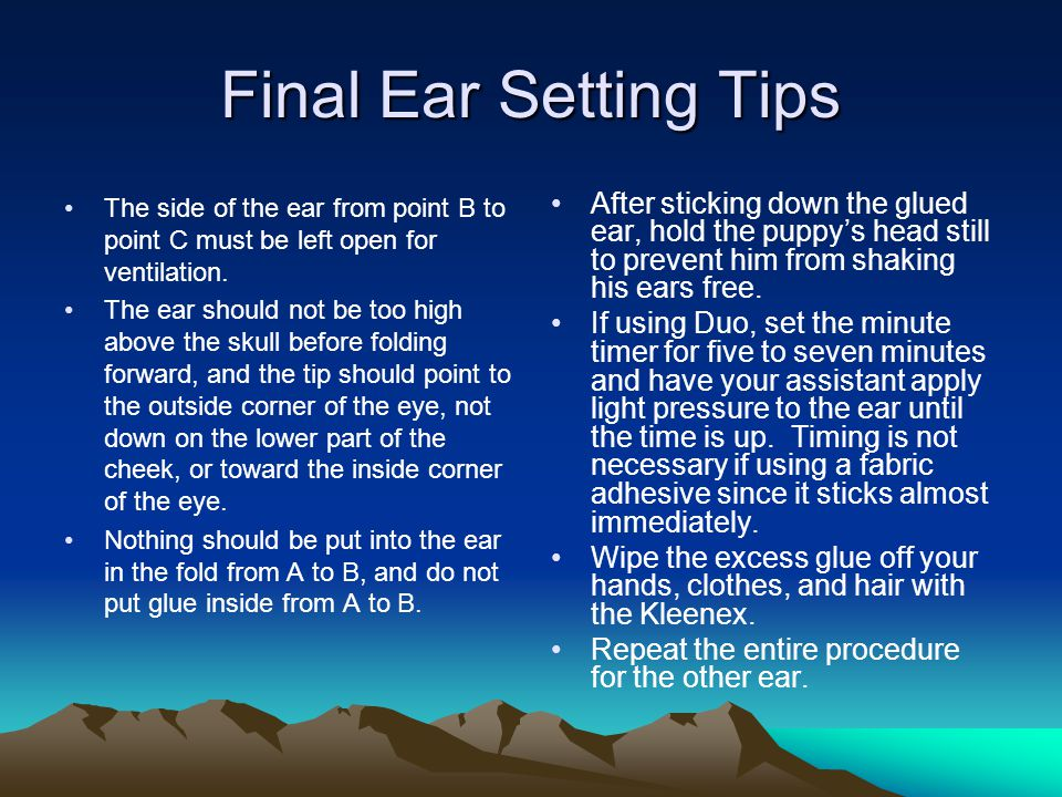 Final Ear Setting Tips The side of the ear from point B to point C must be left open for ventilation.