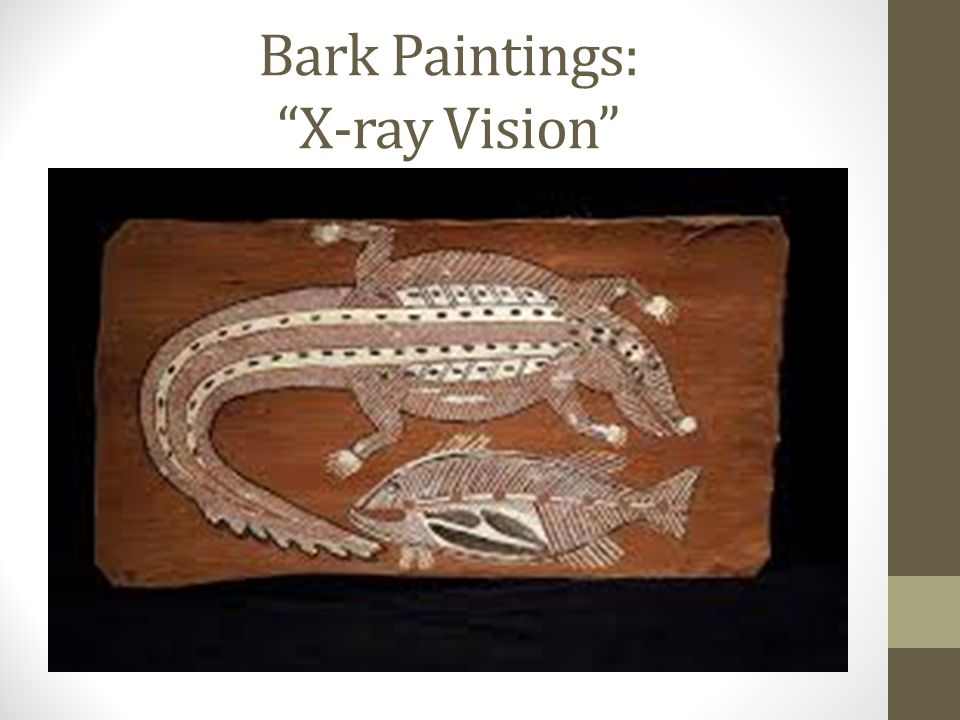 Bark Paintings: X-ray Vision