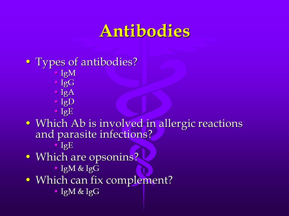 Antibodies Types of antibodies