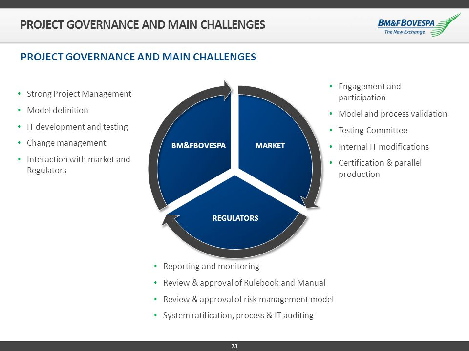 PROJECT GOVERNANCE AND MAIN CHALLENGES