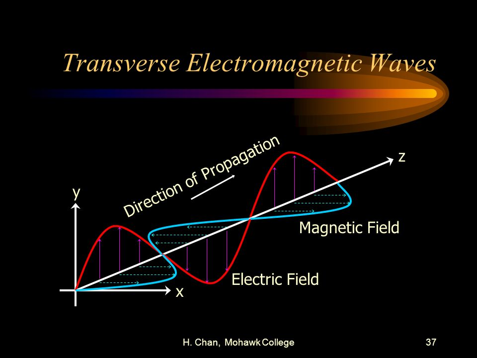 Transverse Electromagnetic Waves