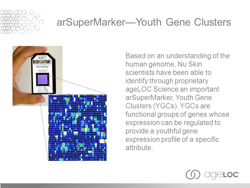 arSuperMarker—Youth Gene Clusters
