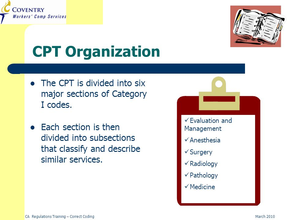 CPT Organization The CPT is divided into six major sections of Category I codes. Evaluation and Management.