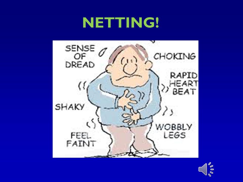 NETTING!