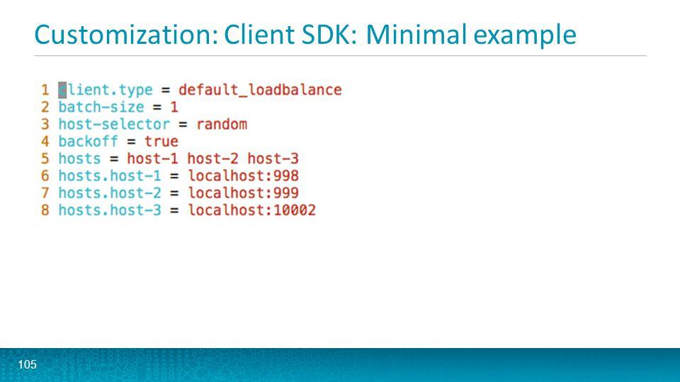 Customization: Client SDK: Minimal example