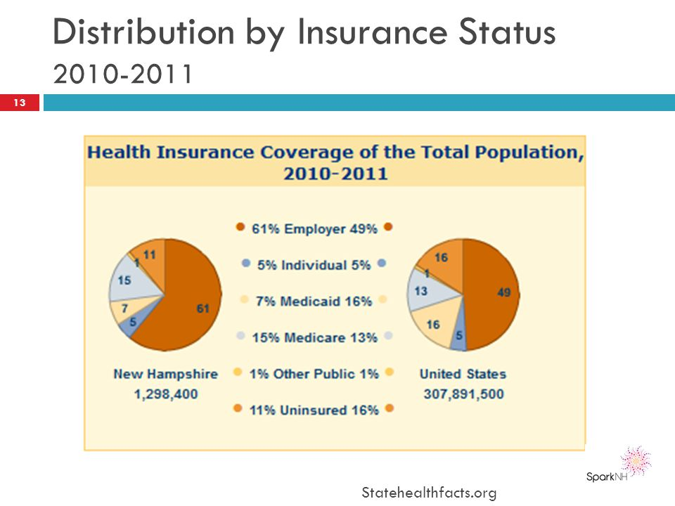 Distribution by Insurance Status 2010-2011