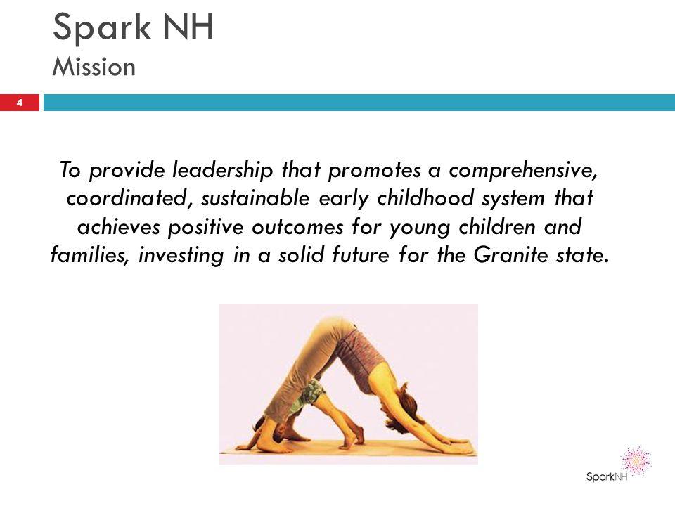 Spark NH Mission