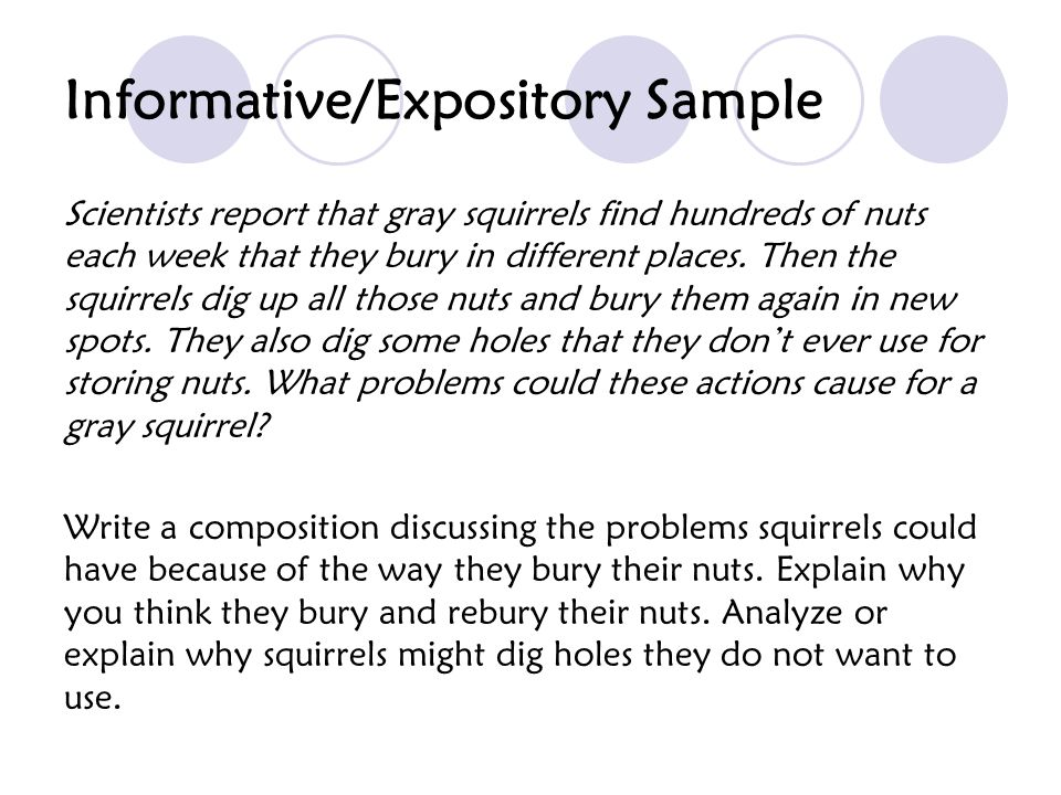 Informative/Expository Sample