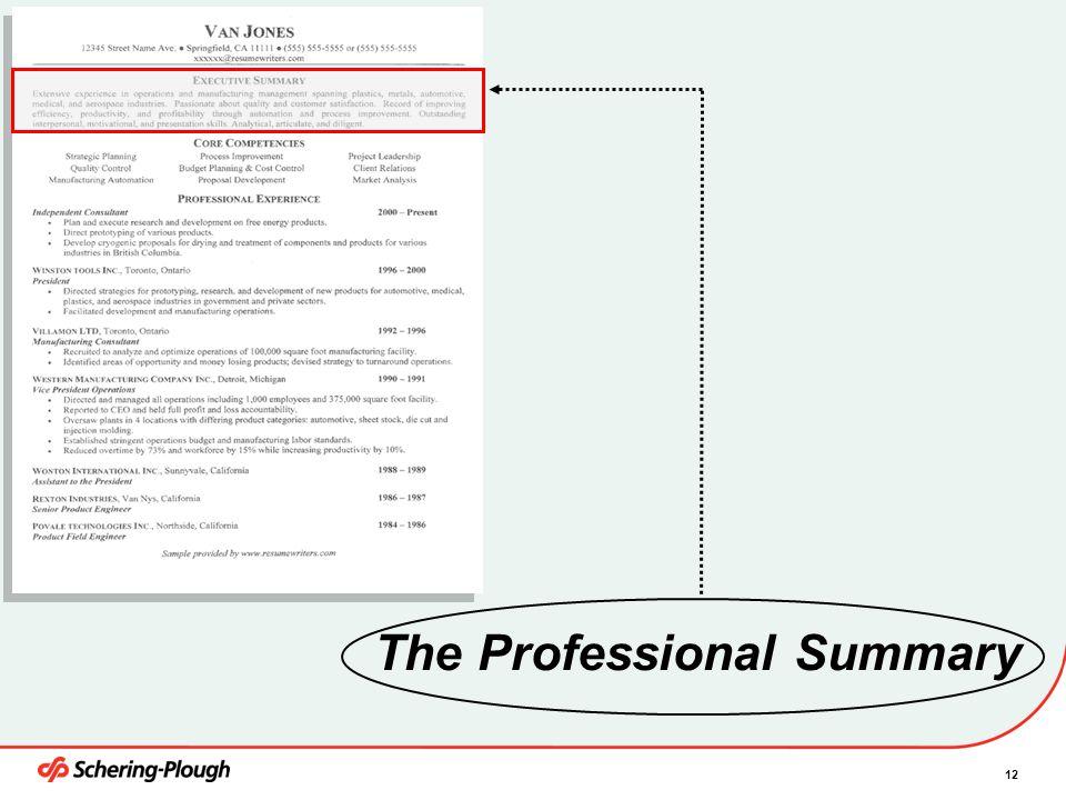 The Professional Summary
