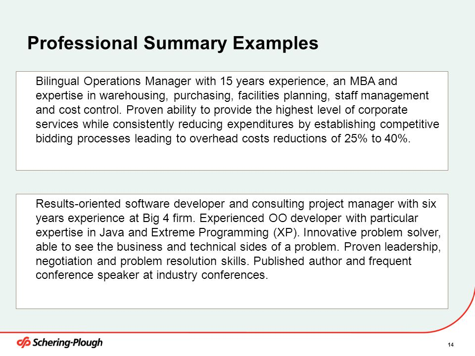 Professional Summary Examples
