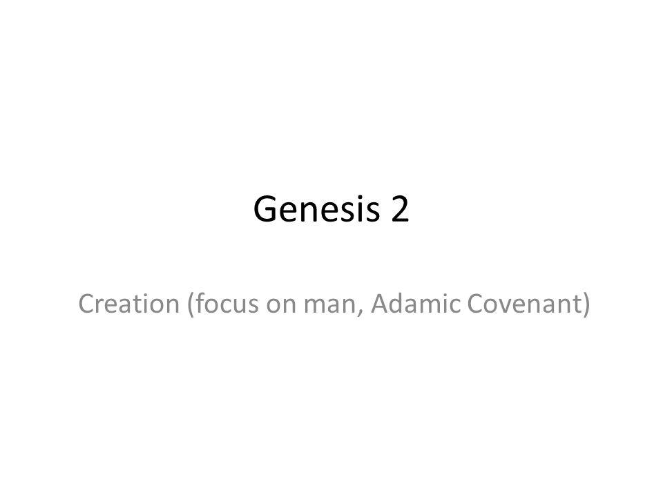 Creation (focus on man, Adamic Covenant)