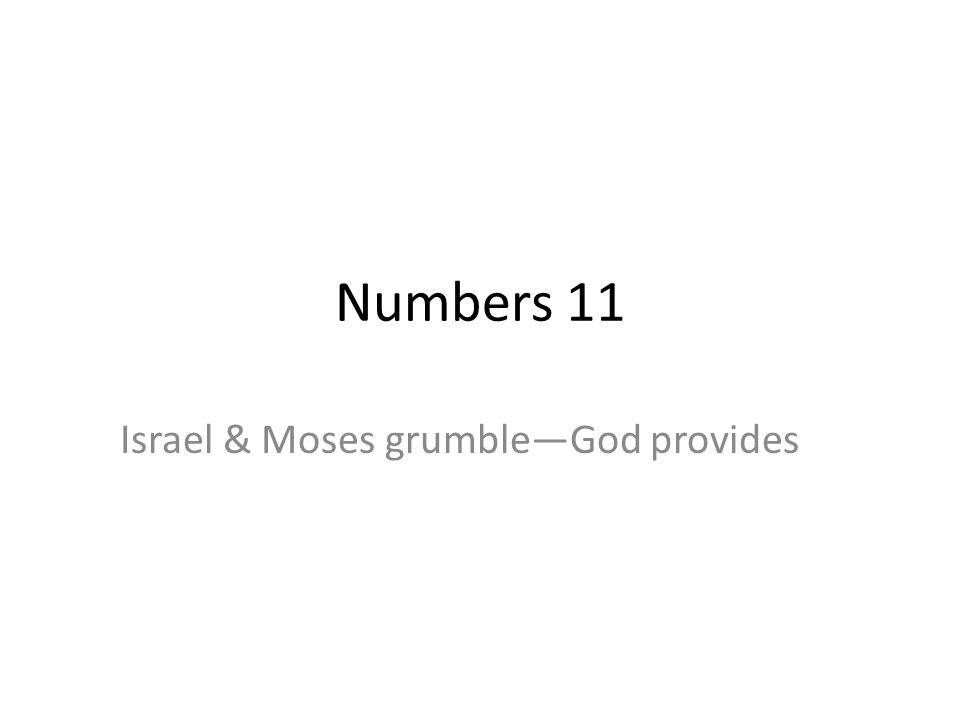 Israel & Moses grumble—God provides