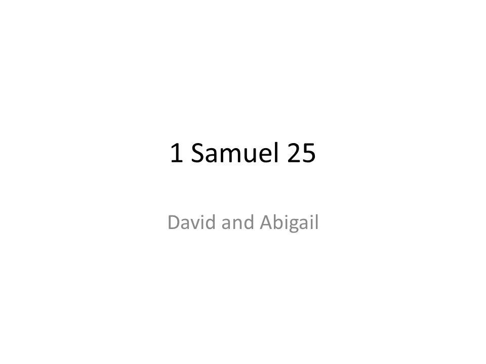 1 Samuel 25 David and Abigail 206