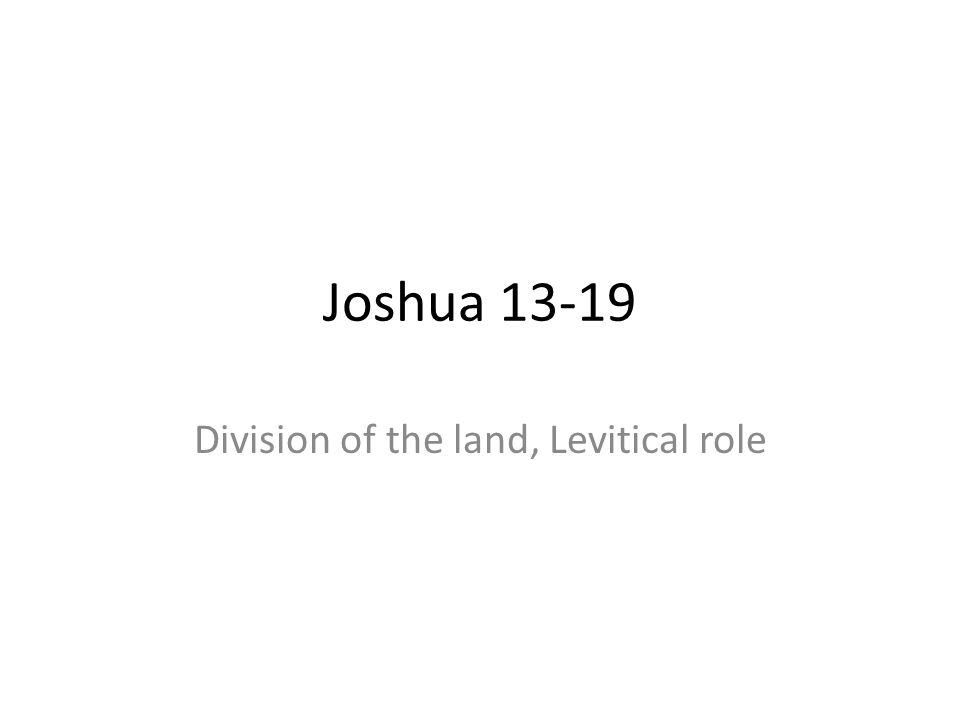 Division of the land, Levitical role