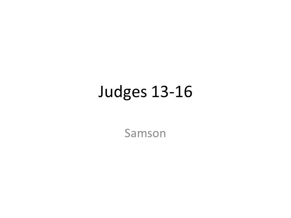 Judges 13-16 Samson 213