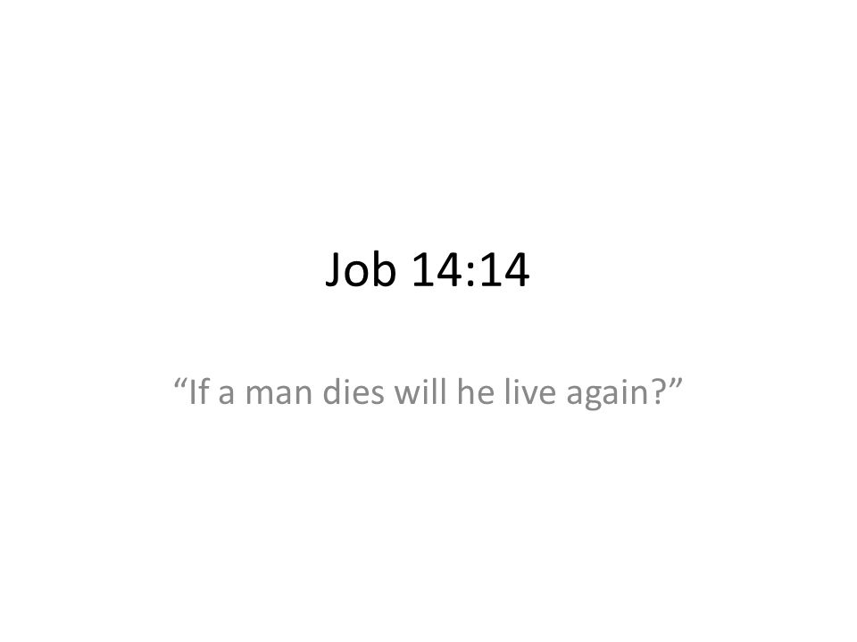 If a man dies will he live again