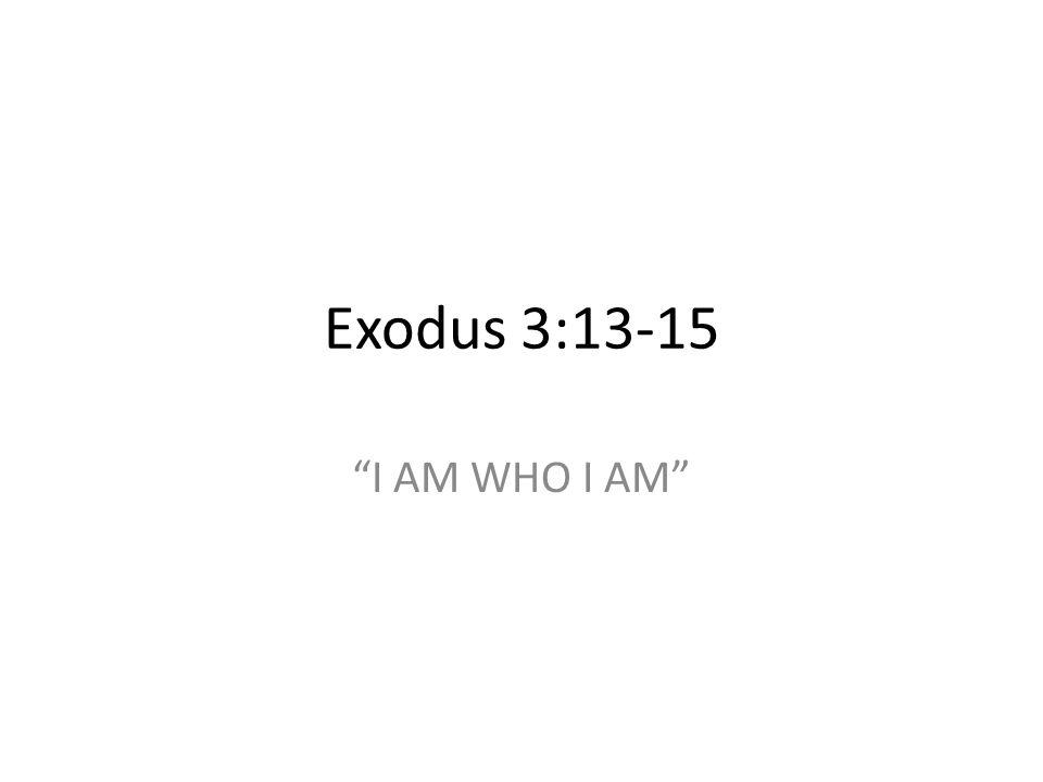 Exodus 3:13-15 I AM WHO I AM 367