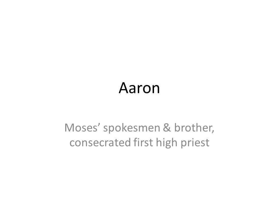 Moses' spokesmen & brother, consecrated first high priest
