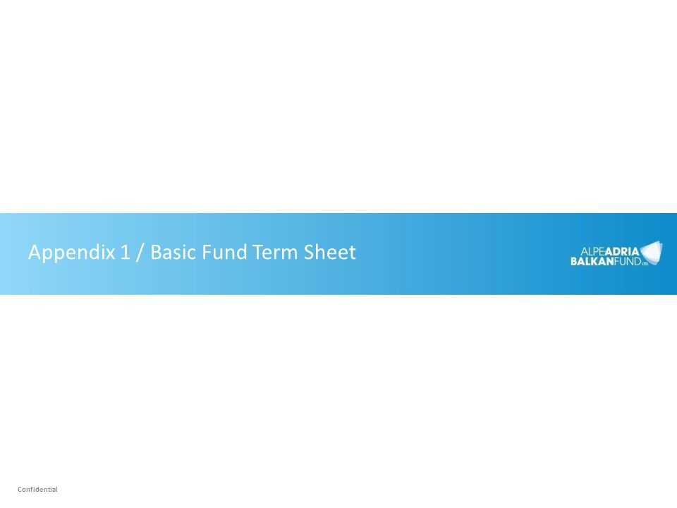 Appendix 1 / Basic Fund Term Sheet