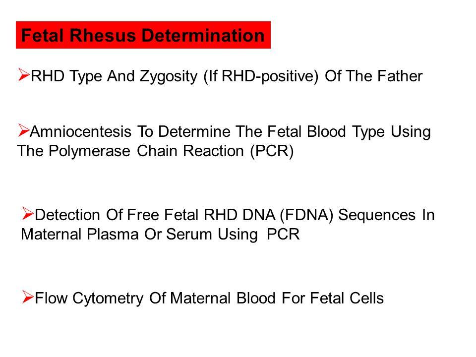 Fetal Rhesus Determination