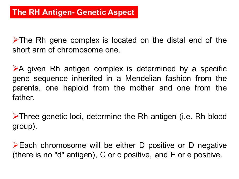 The RH Antigen- Genetic Aspect
