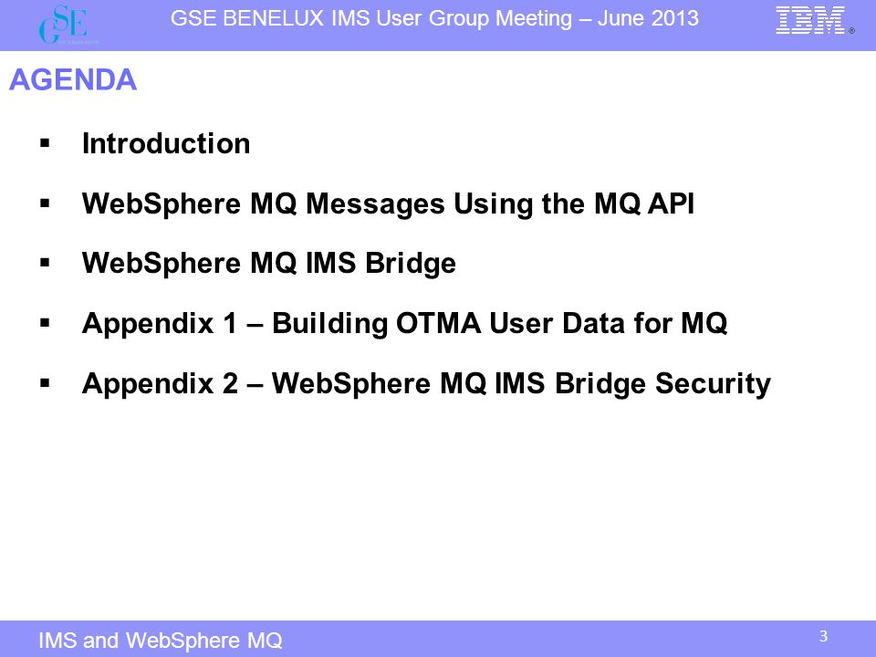 AGENDA Introduction WebSphere MQ Messages Using the MQ API