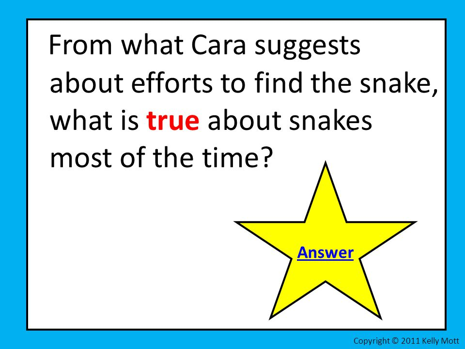 From what Cara suggests about efforts to find the snake, what is true about snakes most of the time