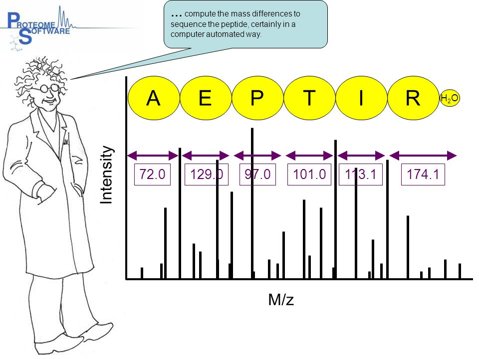 … compute the mass differences to sequence the peptide, certainly in a computer automated way.