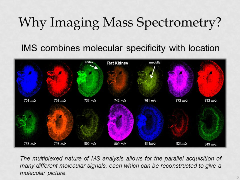 Why Imaging Mass Spectrometry