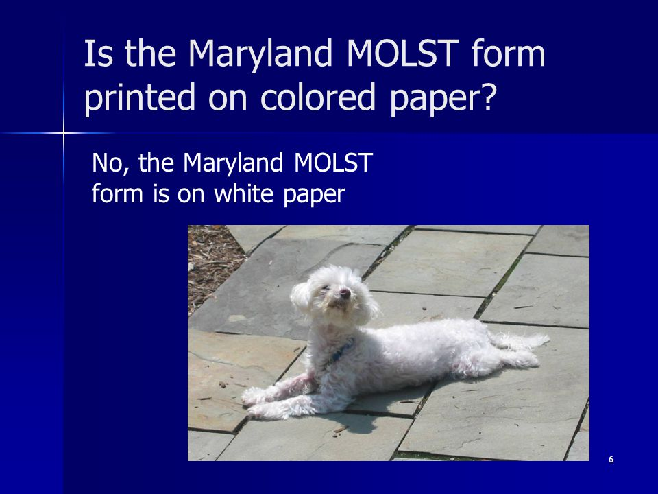 Is the Maryland MOLST form printed on colored paper
