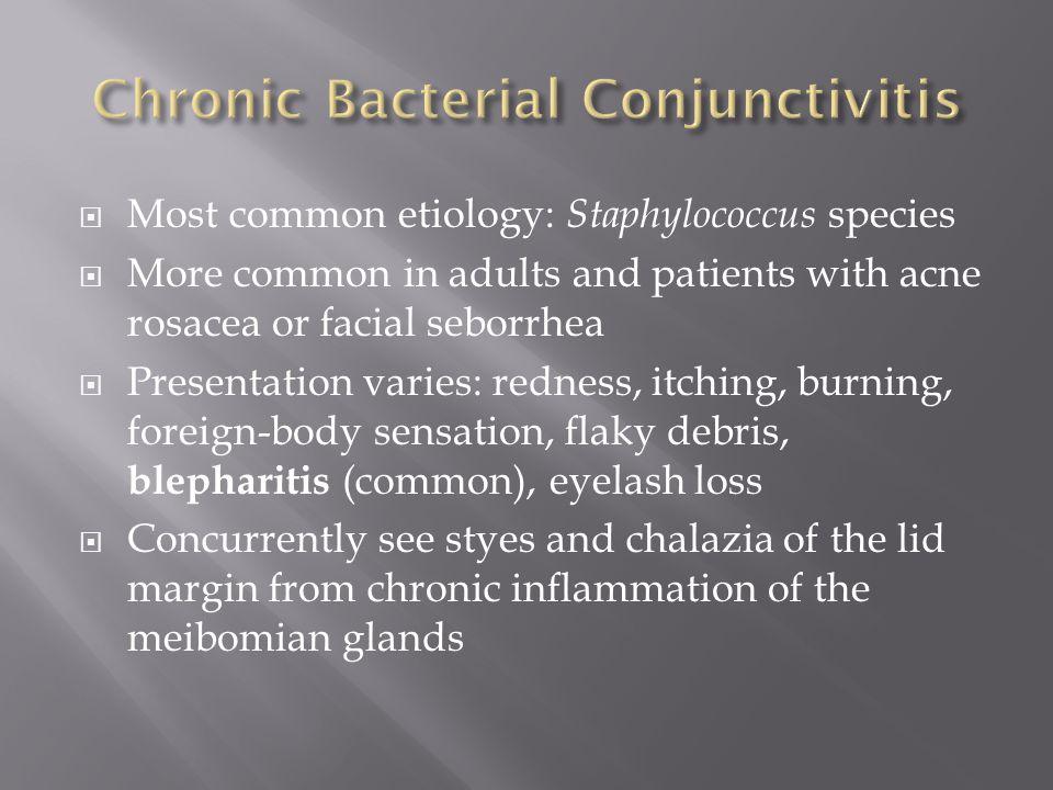 Chronic Bacterial Conjunctivitis