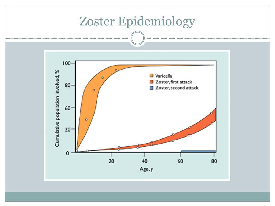 Zoster Epidemiology