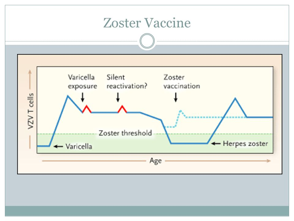 Zoster Vaccine