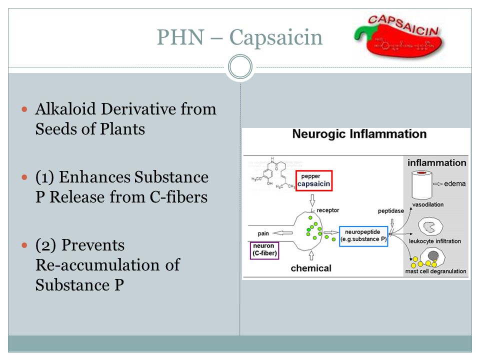 PHN – Capsaicin Alkaloid Derivative from Seeds of Plants