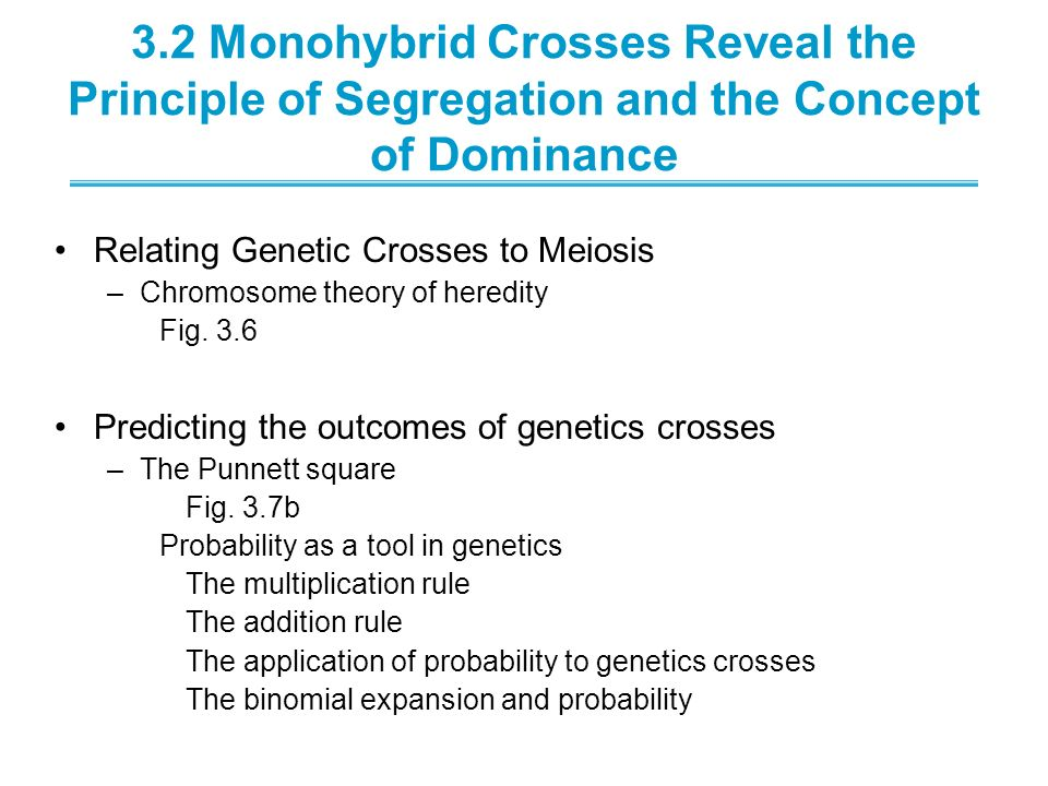 3.2 Monohybrid Crosses Reveal the Principle of Segregation and the Concept of Dominance