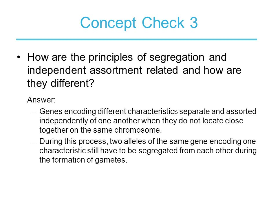 Concept Check 3 How are the principles of segregation and independent assortment related and how are they different