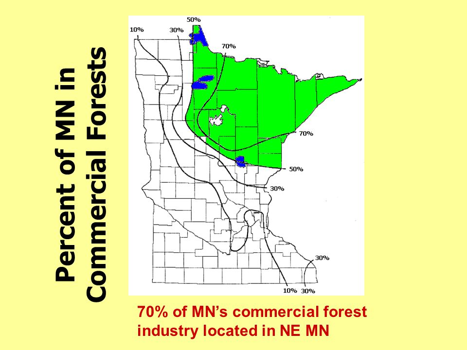 Percent of MN in Commercial Forests